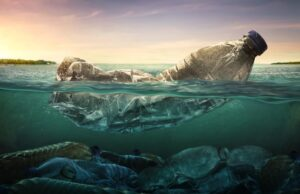 ekológia a znečistenie morí plastom